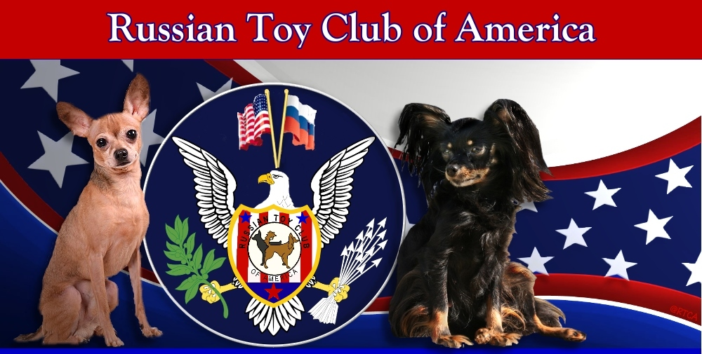 Russian Toy Club page banner