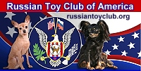 Russian Toy Club link banner